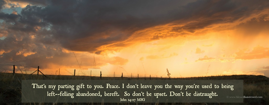 Peace.  God offers you peace for your #caregiver journey. http://wp.me/p2UZoK-x6 via @blestbutstrest