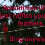 Life's a Mess – Be Still and Sing